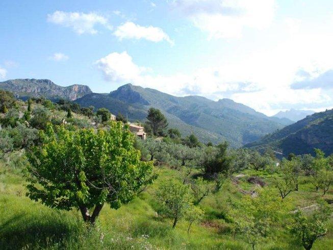 6 Days Autumn Meditation, Mindfulness, and Yoga Retreat Alicante, Spain