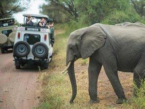 6 Days Camping Safari in Serengeti National Park and Ngorongoro Conservation Area, Tanzania