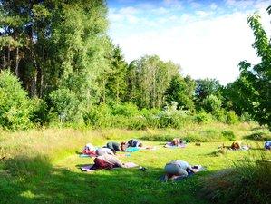 4-Daagse Stilte Retreat met Yoga, Meditatie en Bosbaden in de Vlaamse Natuur in Retie, Antwerpen