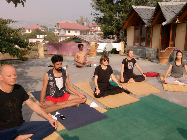 5 Days Detox, Meditation, and Yoga Retreat in Himalayan Village, India