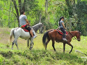 3 Day Relaxing Vacation with Horse Riding in Ibague, Tolima