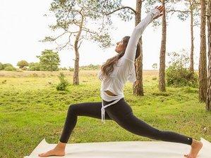 5 jours en stage de yoga de luxe et méditation à Cornwall, Angleterre