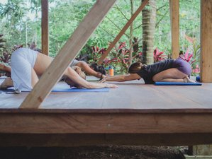 7 Days Beach Therapy Yoga Retreat in Costa Rica
