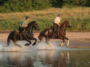 8 Days Horseback Safari in Mashatu Game Reserve, Botswana
