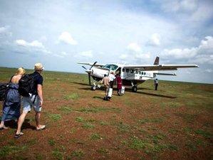 3 Days Flying Safari to Masai Mara, Kenya