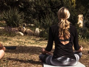 3 Day Intimate Yoga Weekend Retreat in Scarborough