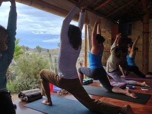 11 Day Meditation and Kundalini Yoga Training in San José del Cabo, Baja California Sur