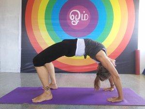 28 días profesorado de yoga tradicional de 200 horas en la India