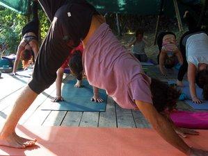 7 Days Journey Through Body and Mind Yoga Retreat in Oleiros, Portugal