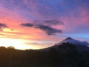 4 Day Yoga Intensive in Ometepe Island - Develop Your Home Yoga Practice