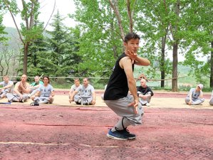 1 Year Intensive Training Shaolin Kung Fu in Song Mountain of Original Shaolin Temple, Henan