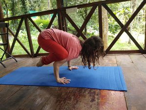 15 Day Ayurveda Obesity and Yoga Retreat in Kerala