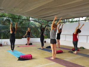 26 Days 200-hour Multistyle Yoga and Meditation Teacher Training Goa, India