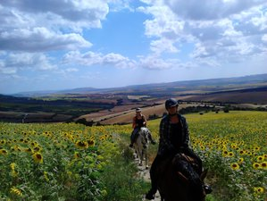 4 nights Yoga and Horse Riding Short Break in Spain