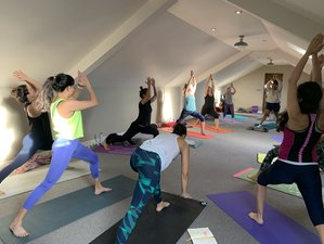 5 Day Cleansing Wellness Retreat with Yoga, Fitness, and Meditation in Devon, England