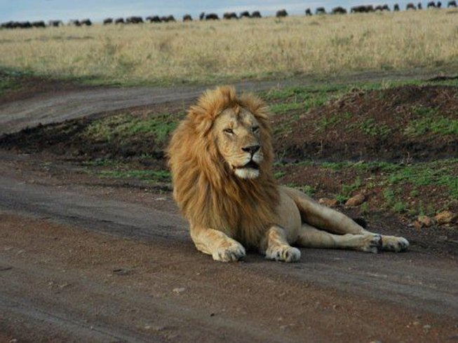 3 Days Tsavo East National Park Safari in Kenya