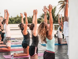 8 Day The Surfer Beach Camp - Yoga and Surf Camp in Weligama, Southern Province