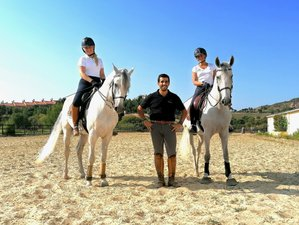 6 Days / 10 Lessons - Intensive Dressage Holidays in Portugal