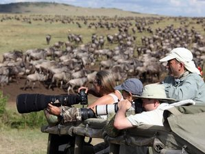 4 Days Secrets of Tanzania, Safari in Northern Serengeti