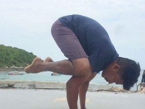 8 Day Wellness Yoga Retreat in Kerala