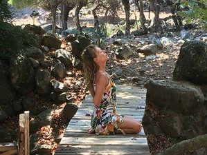 Self-Paced Online One-on-One Yoga Course over Skype