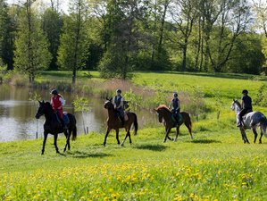 4 Days Exhilarating Horse Riding Holiday at Galiny Palace, Poland