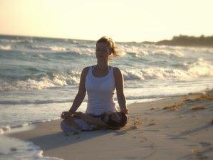 3 Tage Yoga Wochenende mit Halbpension und 4 x Yoga auf Rügen