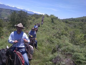 10 Day Independence Trail Ride to Barichara, Santander
