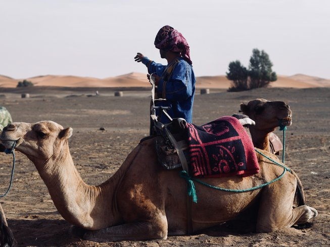 Camel Leren Bank.5 Days Luxury Yoga Retreat In Marrakesh Morocco