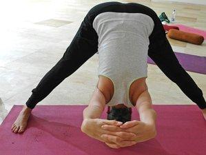 9 jours en stage de yoga scaravelli dans le Kerala, Inde