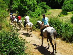 2 Day Light Horse Riding Holiday in Arcos de la Frontera, Cadiz