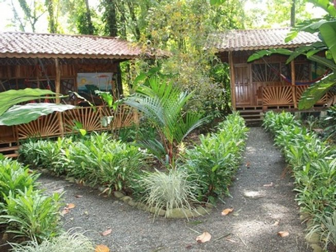 3 Days Short Break Surf and Yoga Retreat in Limon, Costa Rica