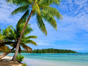 15 Day 200-Hour Yoga Teacher Training on Beautiful Isla Mujeres