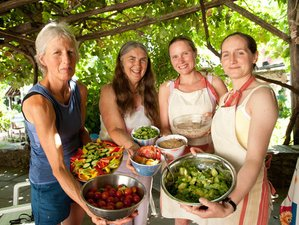 8 Days Raw Food Cooking & Detox Holidays in Greece