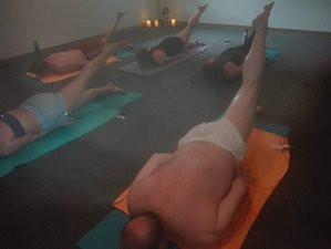 7 Days of Yoga, Relaxation, Forest and Mountain Walks Retreat in Perthshire, UK