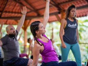 7 Day Explore Ayurveda and Yoga Retreat with Avani in Puerto Viejo de Talamanca