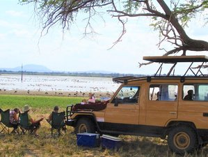 5 Days Wildlife Safari in Ruaha and Mikumi National Parks, Tanzania