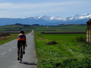 6 Days Culinary and Self-guided Cycling Tour in Spain