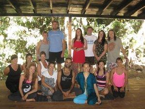 22 días profesorado de 200 horas de yoga en Costa Rica