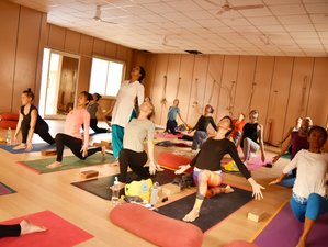 29 Day 300-Hour Multi Style Yoga Teacher Training in Rishikesh