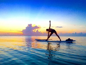 5 Days 25 Hours SUP Yoga Teacher Training in Key West Florida USA