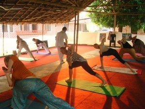 13-Daagse Yoga Retraite in India