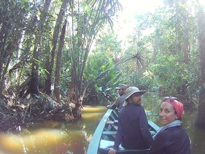 2 Day Express Jungle Tour in Tambopata National Reserve, Madre de Dios Region