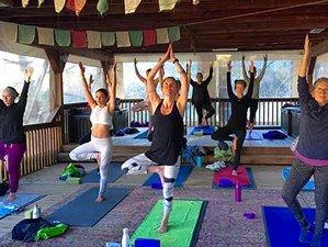 3 Day Weekend Hot Springs, Wine Tasting, and Yoga Retreat in Wilbur Springs, California