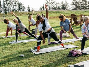 3 Day Self-Love Discovery Weekend Glamping Yoga Retreat in Elgin, Western Cape