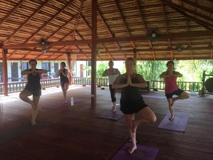 22 Days 200-Hour Yoga Teacher Training Phuket, Thailand