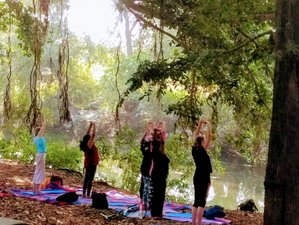 11 Day Yoga Retreat in a 15th Century Palatial Homestay in Rajasthan