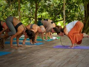 21 Days 200-Hour Tantra and Hatha Yoga Teacher Training Course in Koh Phangan, Thailand