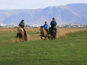 3 Day Black Lava and Green Valleys Horse Riding Holiday in the Reykjavík Capital Area