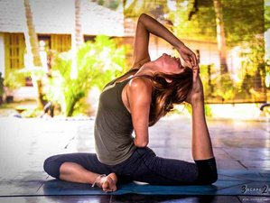28 Days 200-Hour Yoga Teacher Training India